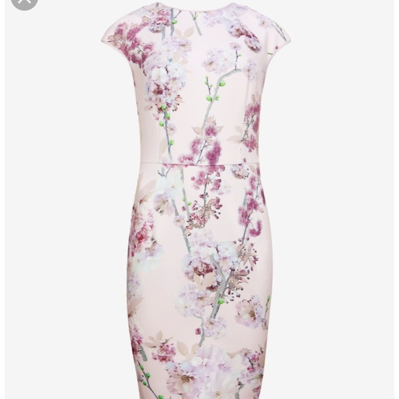 18dc53a86403 Ted Baker Sprinkled Blossoms bodycon dress size 1